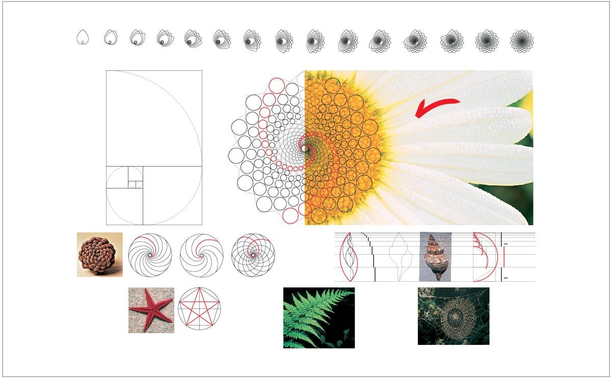 Referência: Sequência de Fibonacci